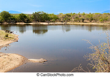 south african landscape and river in UAR, Kruger's park
