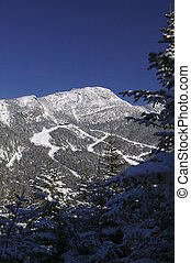 The top of Mt. Mansfiled in winter. - Ski trails on the top...