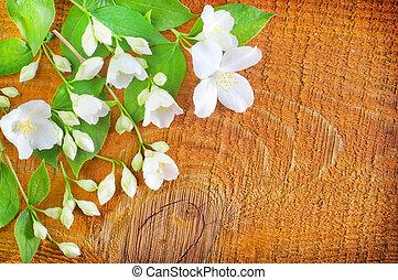 Jasmin on wooden background