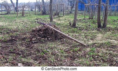 rake - spring cleaning the garden, rake lying on a pile of...