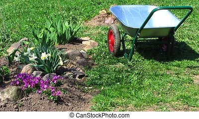 wheelbarrow - garden wheelbarrow next to a flower bed