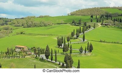 winding cypress road - winding road with cypresses beside in...
