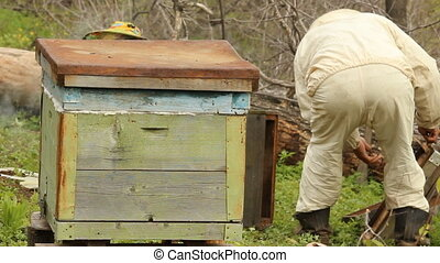 The apiary Spring works with hives