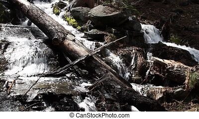 closeup of a beautiful waterfall in sequoia national park,...