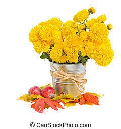 bouquet of yellow mums in pot with autumn leaves isolated on...