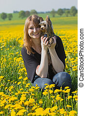 Young girl with yorkshire terrier in the dandelion meadow