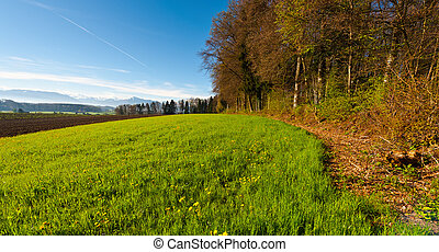Plowed Fields - The Swiss Village Surrounded by Forests and...