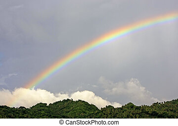 Colorful rainbow over green hill