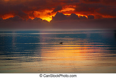 sunset over lake with duck - sunset with orange sky over...