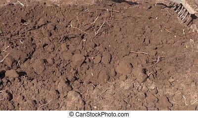 rake soil in spring garden