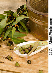 Aromatic eucalyptus seeds and leaves in a stil llife