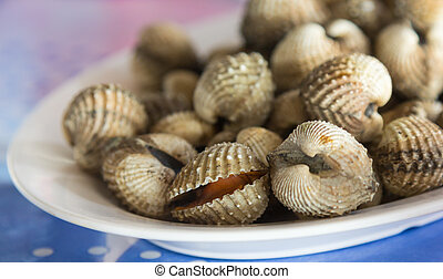 Fresh blanched cockles