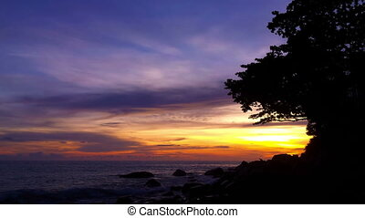 Rocky shore of tropical ocean