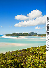 Wonderful sea and forest of Queensland Whitehaven Beach -...