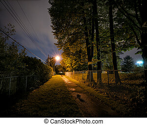 Lonely Path at Night - A lonely, deserted and spooky treed...