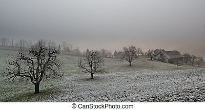 gray farmland - panoramic view of a farmhouse and trees on a...