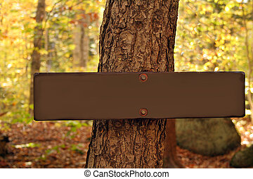 Blank Wooden Sign - Blank wooden sign nailed to tree with...