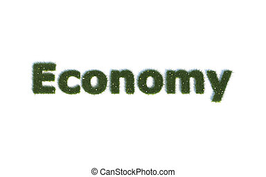 Economy  out of realistic Grass