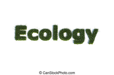 Ecology out of realistic Grass