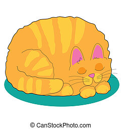 Cat - A big fat marmalade cat is asleep on a teal rug