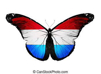 Luxembourg flag butterfly, isolated on white background