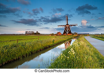 wildflowers and dutch windmill at sunrise - wildflowers and...