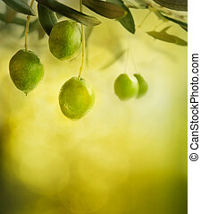 Olives design background - Summer olives design background...