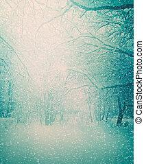 hiver, Arbres