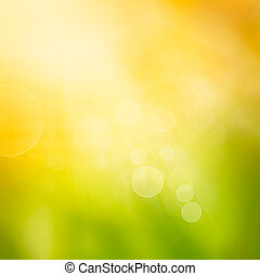 Bokeh autumn nature background - Autumn or summer abstract...