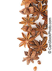 anisetree anise - Whole Star Anise isolated on white...
