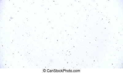 Snow Falling on the lens - Snow Texture Falling directly on...