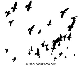 Peace to the World - Pigeons flying in a V-formation low...