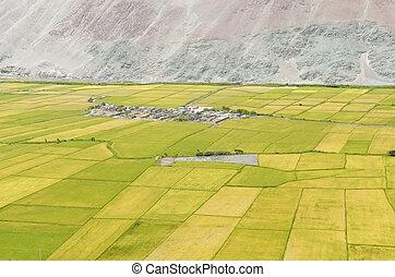 Camana Valley in Peru