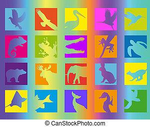 animal icon color