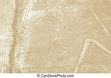 the spider geoglyphs of Nazca