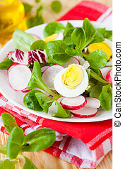 Fresh salad of radish and greens, eggs, food closeup