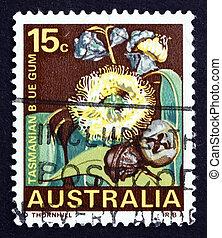 Postage stamp Australia 1968 Tasmanian Blue Gum, Tree -...