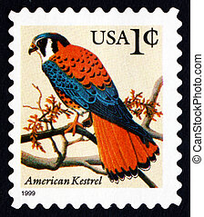 Postage stamp USA 1995 American Kestrel, Falcon - UNITED...