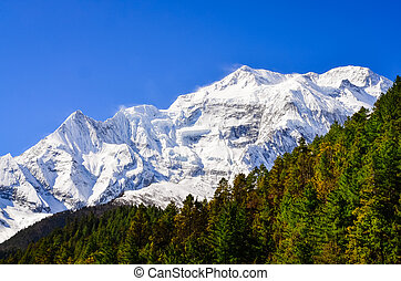 Himalayas mountain peak view of Annapurna II with trees in...