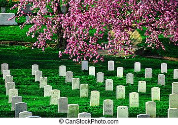 Arlington, nacional, cemitério