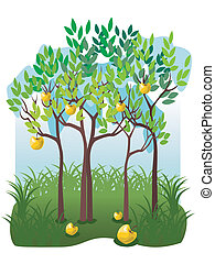 Juicy fruits in the apple garden - Illustration with apple...