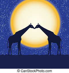 Card with giraffe pair at night