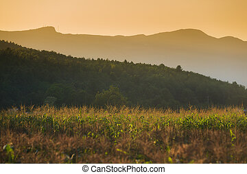Sunset behind Mt. Mansfield in Stowe, VT, USA - Golden...