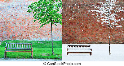 Park bench and tree in two seasons - spring and winter