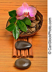 Orchid flower, pebbles in the coconut shell and cinnamon...