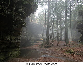 Misty Hike in Hocking Hills, OH