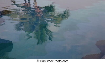 an abstract shot filming the reflections of palm trees in...
