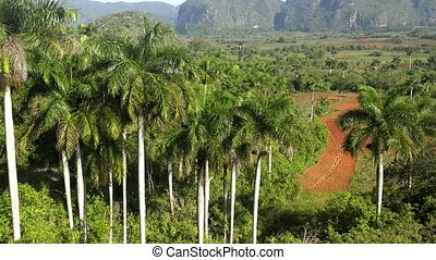 Hills and mountains, Vinales, Cuba - Nature and landscape,...