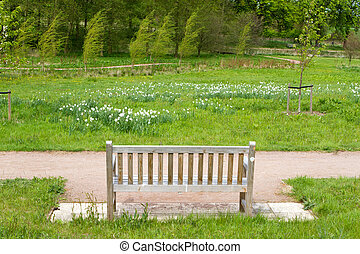 bench in an English Countryside scene