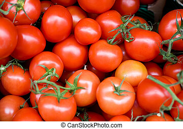 Fresh Tomatoes - Fresh produce for sale - tomatoes